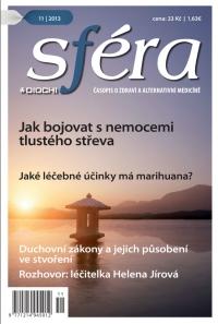 SFÉRA 11/2013